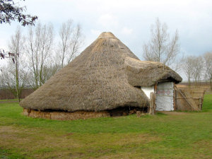 House at Flag Fen